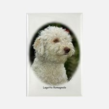 Lagotto Romagnollo 9M048D-18 Rectangle Magnet (10