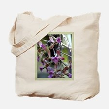 epi. anceps-r Orchid Tote Bag