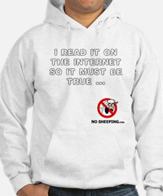 Truth on the Internet? Hoodie