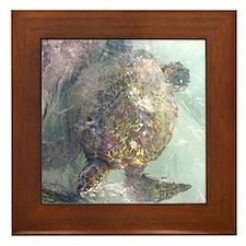 Watercolor Turtle Framed Tile