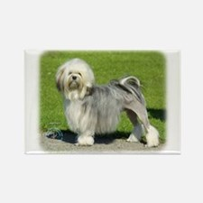 Lhasa Apso 8K61D-18 Rectangle Magnet