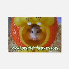 Roborovski Hamster Magnet