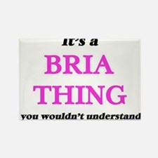 It's a Bria thing, you wouldn't un Magnets