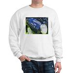 FenderScape Sweatshirt