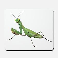 Praying Mantis Mousepad
