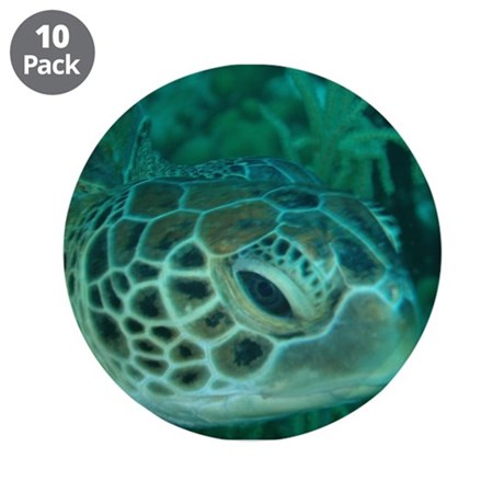 """Green Turtle 3.5"""" Button (10 pack)"""