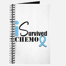 Prostate Cancer Radiation Journal