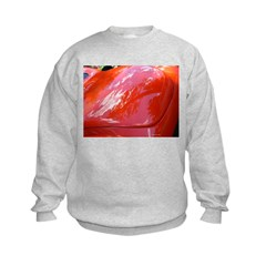Reflections in Red Sweatshirt