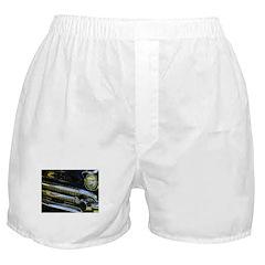 Black Chrome Boxer Shorts