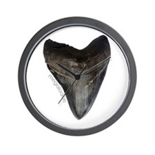Megalodon Tooth Wall Clock