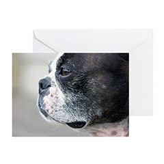 Boston Terrier Greeting Cards (Pk of 20)