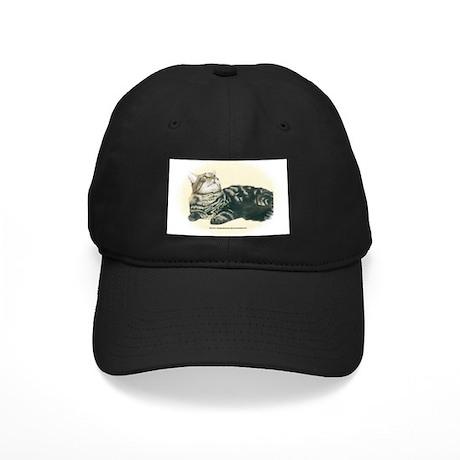 Maine Coon Black Cap