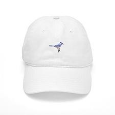 Blue Jay Posed Baseball Cap