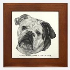 Nikki, English Bulldog Framed Tile