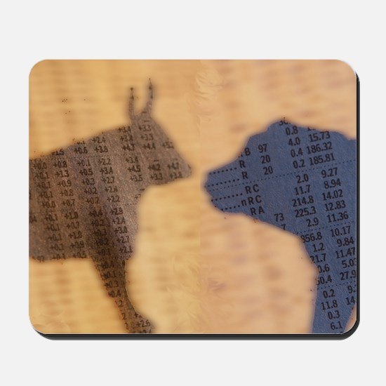 Shadow of the Bull and Bear Mousepad