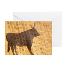 Shadow of the Bull Greeting Cards (Pk of 10)