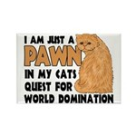 Cat's World Domination Rectangle Magnet