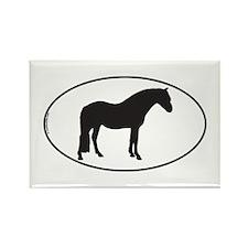 Connemara Pony Rectangle Magnet
