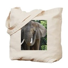"""Elephant coming and Going"" Tote Bag"