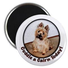 Cairn Cuddles Magnet