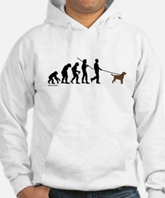 Chocolate Lab Evolution Hoodie