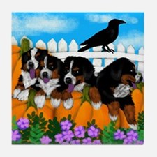 BERNESE HALLOWEEN PUMPKINS Tile Coaster