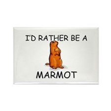 I'd Rather Be A Marmot Rectangle Magnet (10 pack)