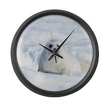 Harp Seal Large Wall Clock