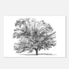 Funny Trees Postcards (Package of 8)