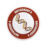 Haplogroup A 3.5