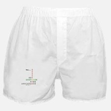 Erection Set Boxer Shorts