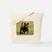 Australian Kelpie 9P022D-025 Tote Bag