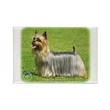 Australian Silky Terrier 9R020D-199 Rectangle Magn