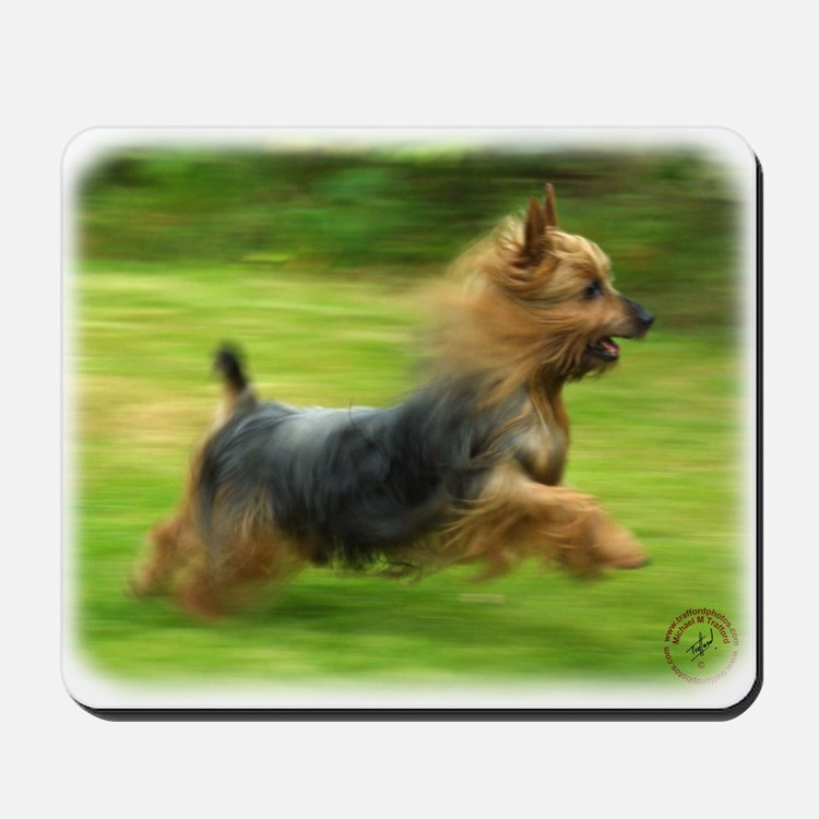 Australian Silky Terrier 9B19D-03 Mousepad