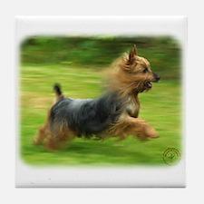 Australian Silky Terrier 9B19D-03 Tile Coaster