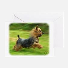 Australian Silky Terrier 9B19D-03 Greeting Card