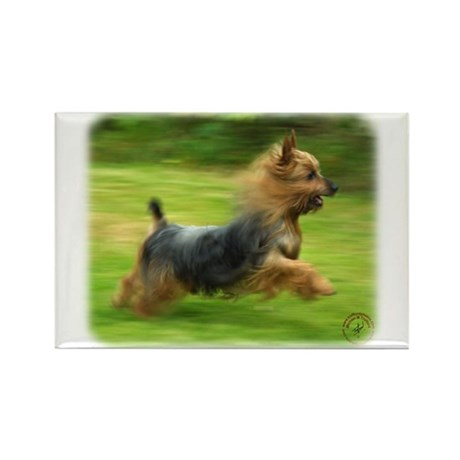 Australian Silky Terrier 9B19D-03 Rectangle Magnet