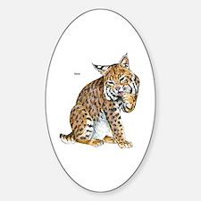 Bobcat Wild Cat Oval Decal