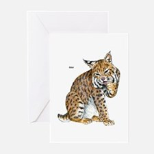 Bobcat Wild Cat Greeting Cards (Pk of 10)