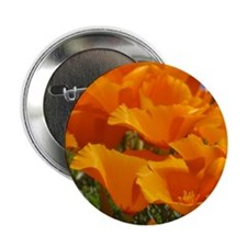 """Poppies by RP - 2.25"""" Button"""