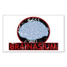brainasium Rectangle Decal