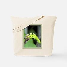 sarcoglottis orchid Tote Bag