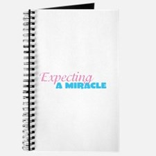 Ivf baby Journal