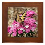 Butterfly Garden Framed Tile