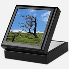 Windblown Tree Keepsake Box