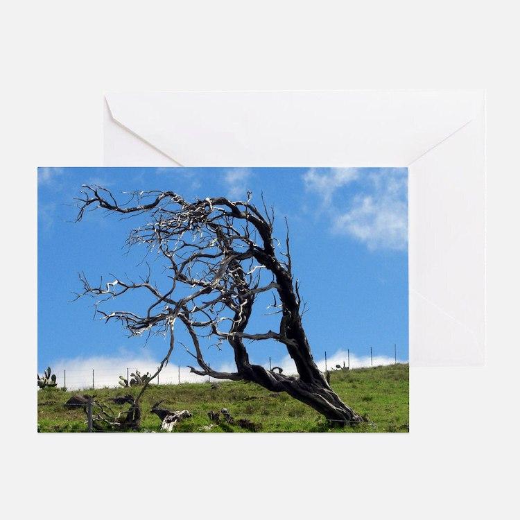 Windblown Tree Greeting Card