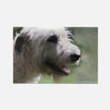 Content Irish Wolfhound Rectangle Magnet