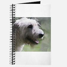 Content Irish Wolfhound Journal