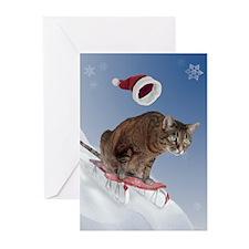 Sledding Cat Christmas Cards (Pk of 20)