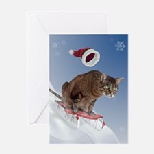 Sledding Cat Christmas Card